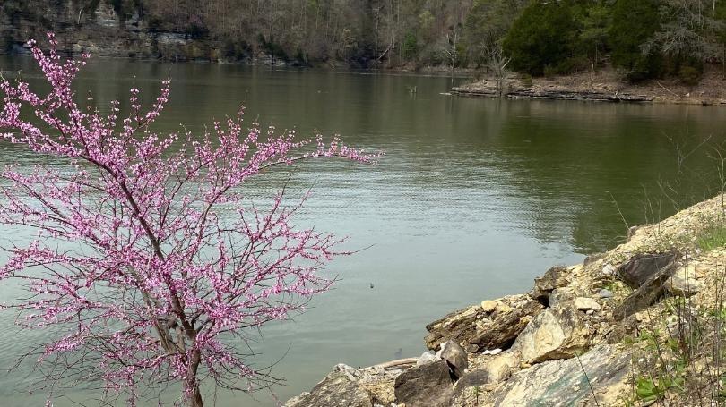 Lake+Cumberland+16+9.jpg