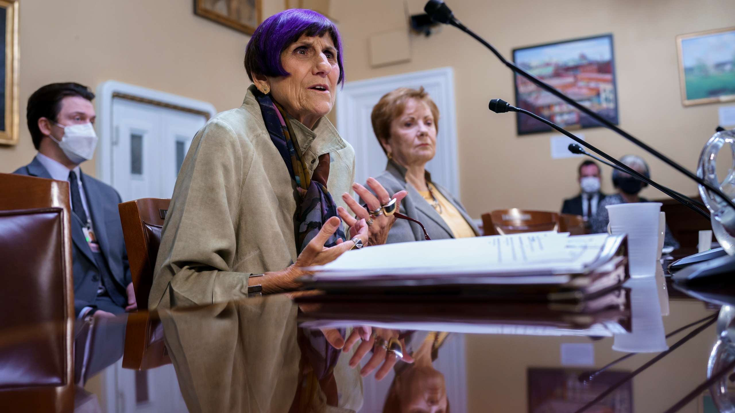 Rosa DeLauro, Kay Granger